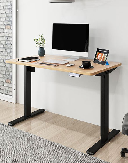 Flexispot®-Malaysia-Electric-Standing-Desk-Height-Adjustable-Sit-Stand-Table-EF1